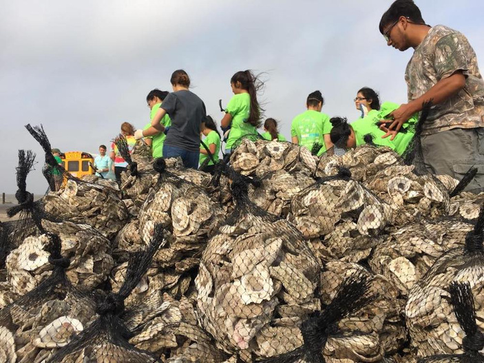 sink your shucks oyster recycling corpus christi
