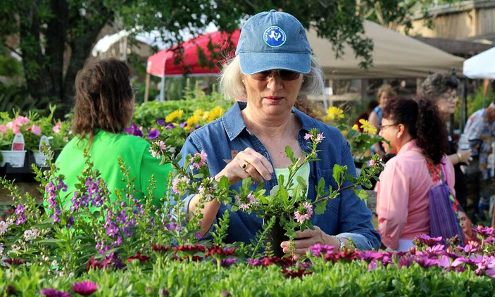 Shop and Grow at Botanical Gardens' Big Bloom Plant Sale