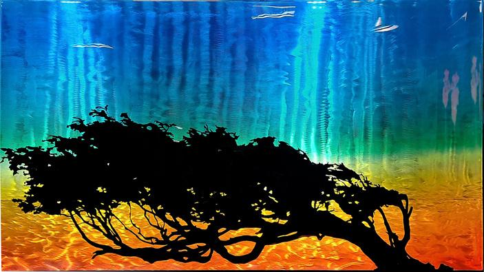 Windswept by Eric von Seibert