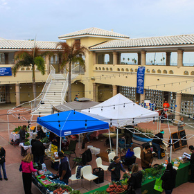 Corpus Christi Downtown Farmers Market