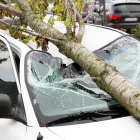 best auto insurance corpus christi