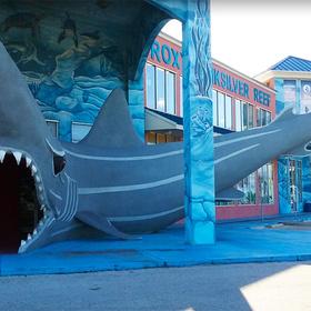 Shark Mouth at Third Coast Beach Co.