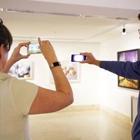 AUGmntd reality art museum of south texas corpus christi