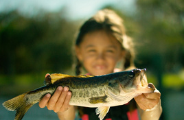 Fish for Free in Corpus Christi June 1
