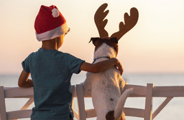 Eclectic Corpus Christi Christmas week events
