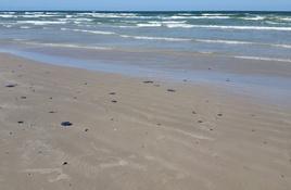 Corpus Christi closes beaches to traffic
