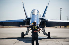 Blue Angels Grounded for Now