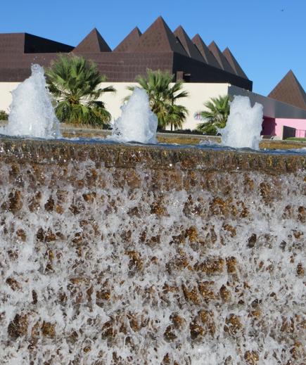 Beautiful Water Gardens Corpus Christi Abstone