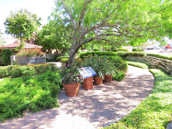 Xeriscaping The Beautiful Side Of Water Conservation