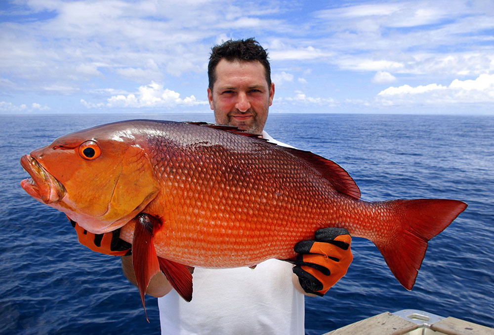 Fish for red snapper from a charter boat for Red snapper fish