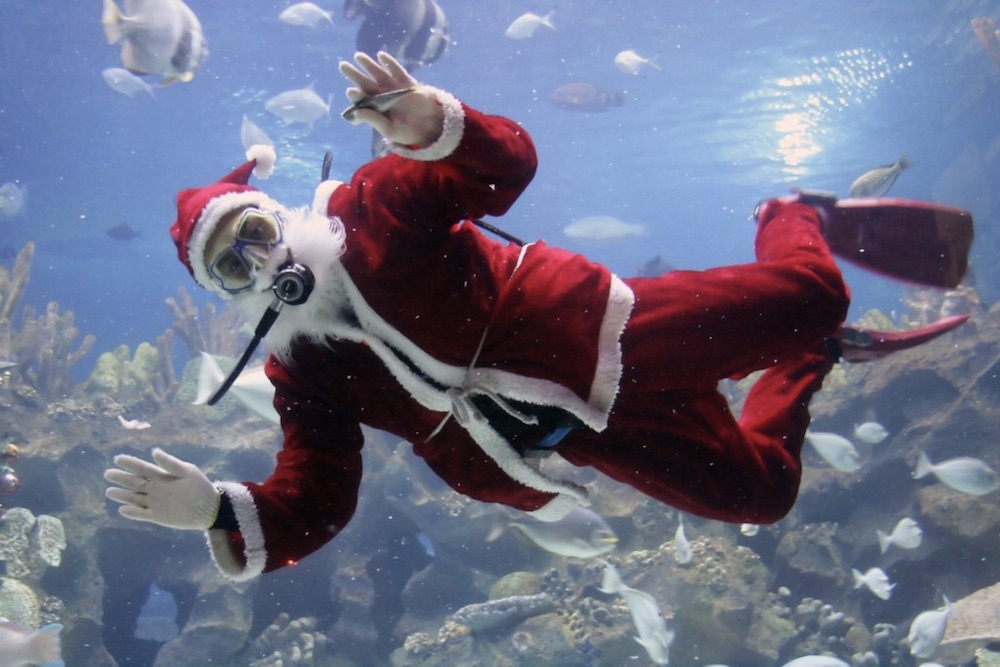 Scuba Santa draws in visitors for holiday selfies every year. Watch Santa feed the fish in Caribbean Journey. Courtesy photo