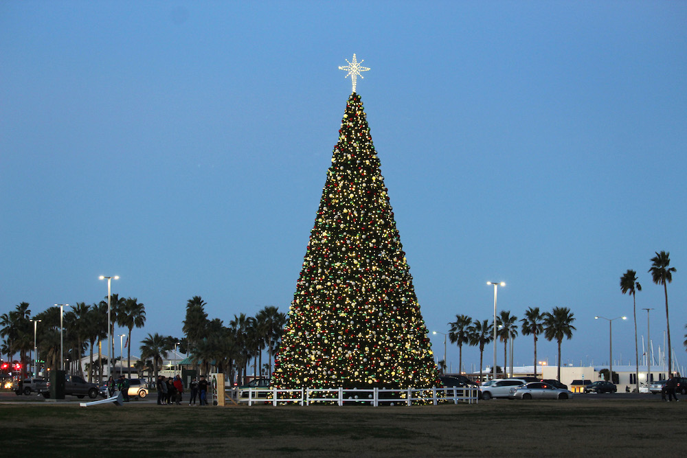 In 2018, Corpus Christi gave itself a Christmas present: a new 66-foot-tall Christmas tree with 2,000 ornaments and 7,000 lights. City crews began erecting the tree the week before Thanksgiving this year to get it ready for the Harbor Lights Festival tree lighting December 7. Photo by Carrie Robertson Meyer/Third Coast Photo